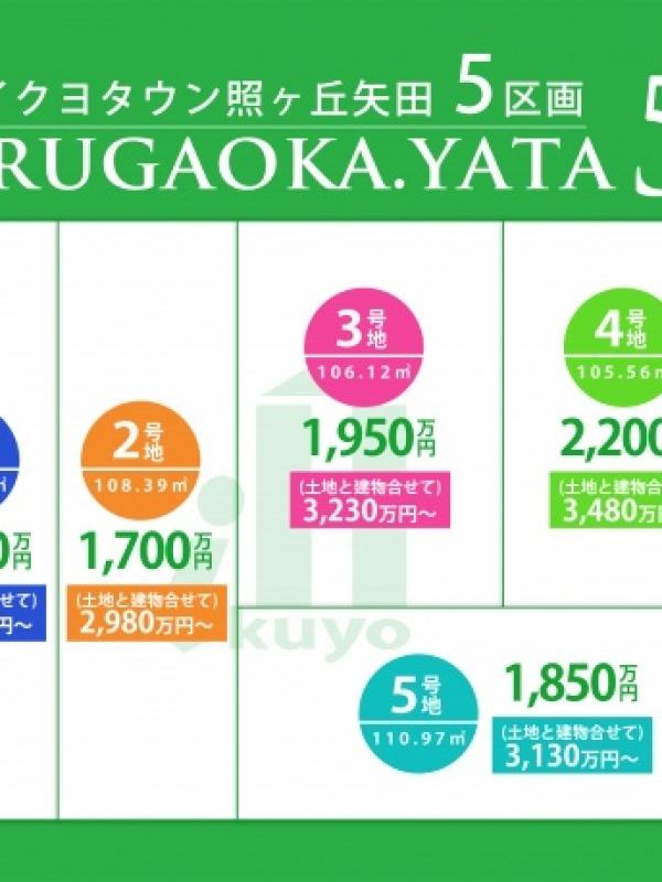 terugaokayata_kakaku_green